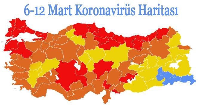 koronavirüs haritası son durum