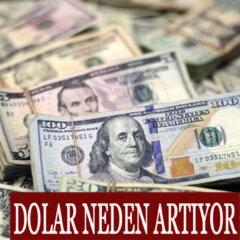 Dolar neden artıyor?