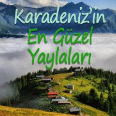 Karadeniz'in En Güzel Yaylaları