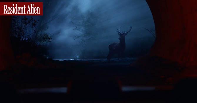 Resident Alien Dizisi geyik sahnesi