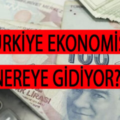 Türkiye Ekonomisi Nereye Gidiyor