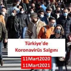 Türkiye'de Koronavirüs Salgını